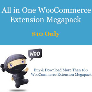all in one woocommerce extensions megapack woobeast