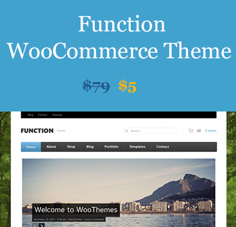 Function WooCommerce Theme Download from WooBeast